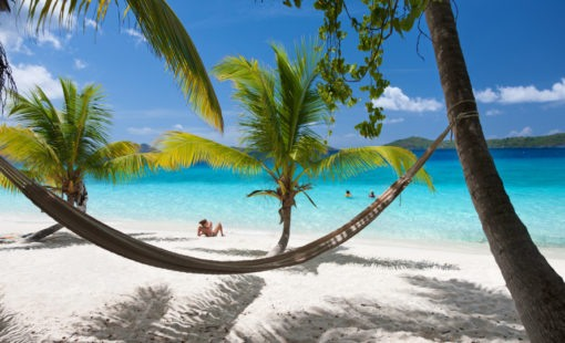 beach scene with a hammock stretched between palm trees