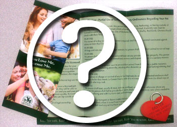 5 Top Brochure Questions