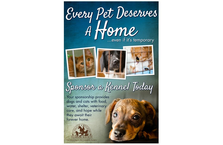 Coulee Region Humane Society Adoption Poster