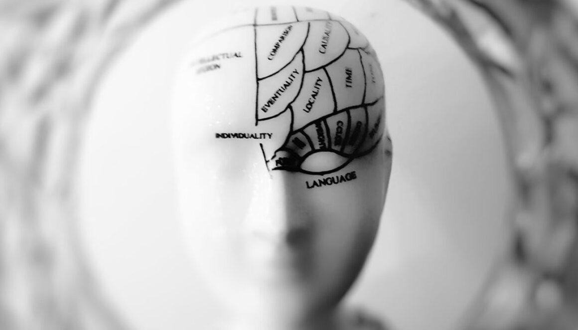 BLU-brain